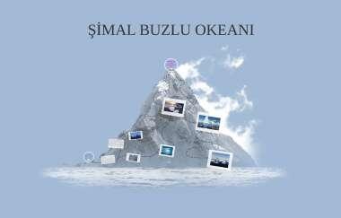 Simal Buzlu Okeani By Fidan Soltanova