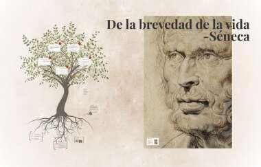 De La Brevedad De La Vida By Estefania Daza
