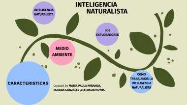 Inteligencia Naturalista By Fabio Niño Gonzalez