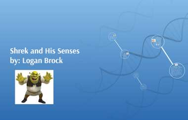 Shrek And His Senses By Pedro Sanchez