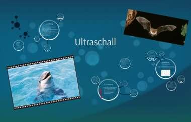 Ultraschall By Annika Eichkorn