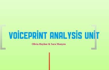 Voiceprint Analysis Unit By Olivia Hayhoe